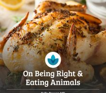On Being Right and Eating Animals
