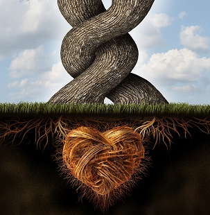 Cultivate Love