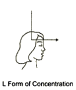 l-form-concentration